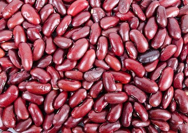 pflanzliche-proteine-rote-bohnen